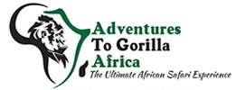 Adventure to Gorillas
