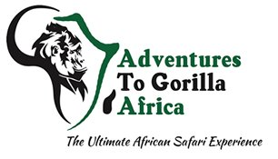 Gorilla Safari Adventure