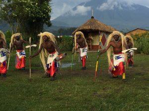 5 days- gorilla-culture