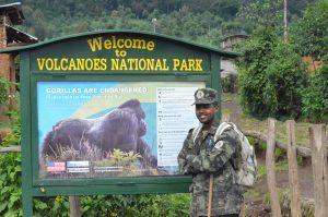 Gorilla Trekking Rules-Gorilla Tour Information Uganda, Rwanda.