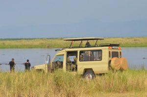 Uganda Safaris- Gorilla Trekking Uganda | Gorilla Safari Adventure