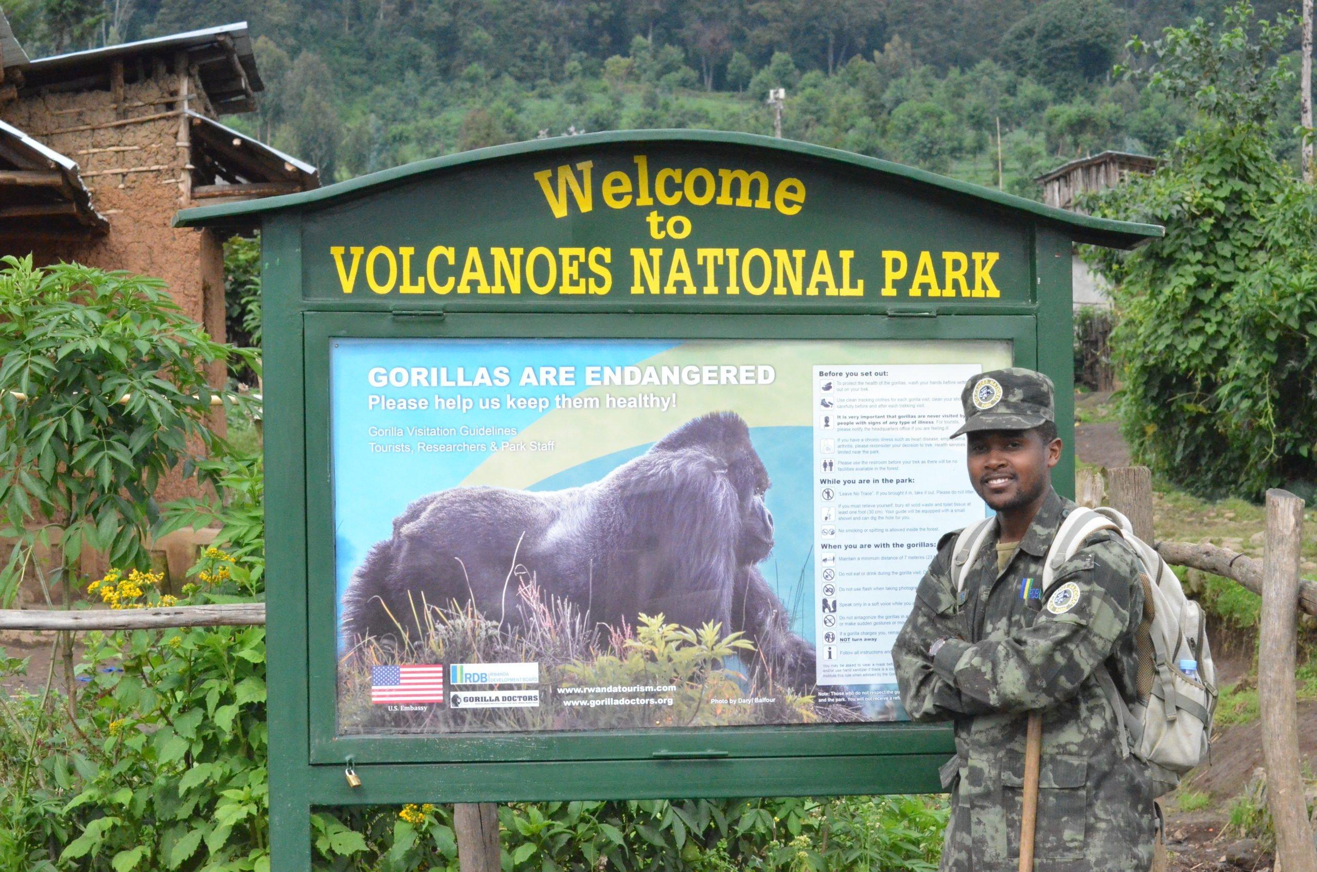 Volcanoes Nationa Park   Attractions & Activities  Gorilla Safari Adventure