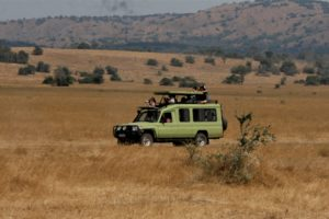 Akagera National Park-Attractions-Activites