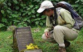 Dian fossey grave hike tour